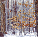 "1111 ""Entrance to the Winter"" 12""x12"""